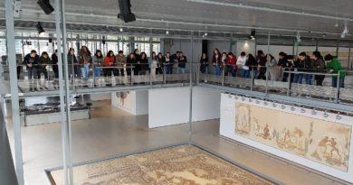 Sortie à Saint-Romain-en-Gal pour les élèves hellénistes et latinsistes